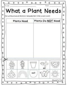 seeds plants worksheet fill in the blanks plant unit science worksheets plant science. Black Bedroom Furniture Sets. Home Design Ideas