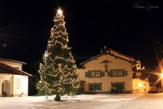The square and Christmass tree of Colle Santa Lucia, small village in The Dolomites, Belluno Province, Veneto Region, Italy. Santa Lucia, Christmas Tree, The Incredibles, Italy, Holiday Decor, Pictures, Outdoor, Teal Christmas Tree, Photos