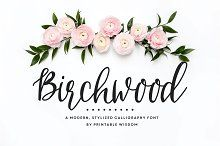 Explore 1,200+ casual, retro, or classically elegant cursive fonts that are eye-catching and memorable. From a loose scribble to a carefully balanced set of capitals, these script-inspired fonts offer styles and embellishments for just about any invitation, event signage, or flyer design.