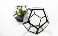 Small Geometric Terrarium Kit / Dodecahedron / Air by GlimpseGlass