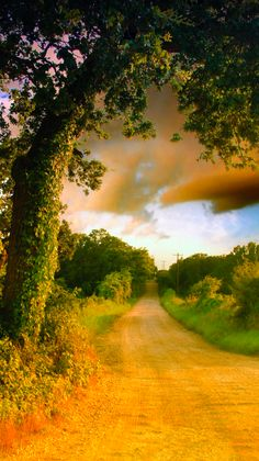 """Hill County, Texas-- I wonder where the photographer took this picture in the """"Hill Country""""! Texas Hill Country, Country Roads, Country Walk, Country Charm, Beautiful World, Beautiful Places, Beautiful Scenery, All Nature, Land Scape"""