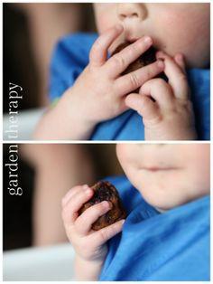 Baby Iron Muffins