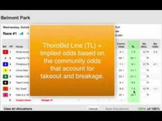 How to Use ThoroBid.com - Part 3: The ThoroBid Line