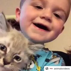 #günaydın  #Repost @animalsvideos (@get_repost)  I'm not sure what they're saying but it's adorable!  - Follow us: (@animalsvideos) for more. - #animalsvideos #animals #animal #animallovers #cute #kids #kitty #kitten #cat #love