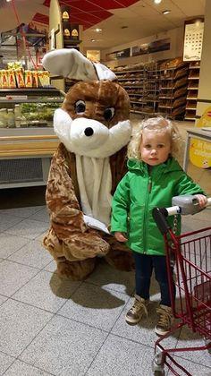 Teddy Bear, Toys, Animals, Animales, Animaux, Teddybear, Animal, Games, Animais