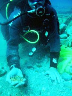 Encontrado na costa de Israel o maior tesouro de moedas de ouro antigas.