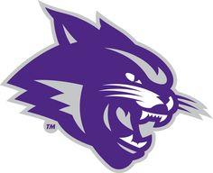 Abilene Christian  Wildcats Partial Logo (2013) -