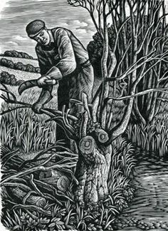 """Woodman"" by Howard Phipps (wood engraving)"