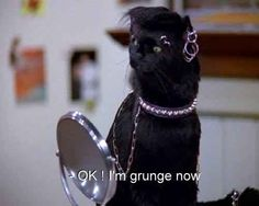 """Switch up your personal style often to keep it fresh. 26 Life Lessons You Learned From Salem Of """"Sabrina, The Teenage Witch"""" Intp, Salem Cat, Salem Saberhagen, The Wombats, Reaction Pictures, Funny Pictures, Movie Quotes, Cat Quotes, Funny Quotes"""