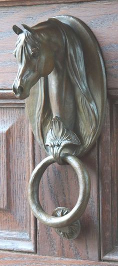 Door knockers unique 18 - Savvy Ways About Things Can Teach Us