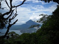 A view of active Volcan Concepcion from near the cloud-forest covered summit of dormant Volcan Maderas on Isla de Ometepe, Nicaragua. The hourglass-shaped island features two volcanoes connected by a narrow isthmus in the middle. The island occupies Lake Nicaragua, the largest lake in Central America and the only lake in the world that holds freshwater sharks.