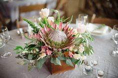 35 ideas eucalyptus succulent bouquet layer cakes for 2019 Protea Centerpiece, Succulent Centerpieces, Succulent Bouquet, Wedding Table Centerpieces, Floral Centerpieces, Succulent Care, Protea Wedding, Floral Wedding, Wedding Bouquets