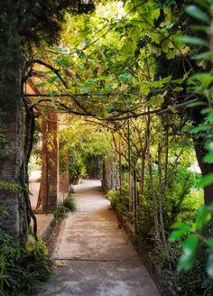Palo Alto Barcelona Garden l Gardenista Backyard Pergola, Pergola Shade, Destinations, Dream Garden, Lush Garden, Edible Garden, Shade Garden, Garden Inspiration, Garden Ideas