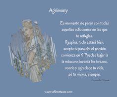 La esencia floral de Agrimony por Aflora tu Ser