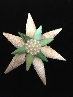 Vintage Artisan Handcrafted Seashell Brooch #Unbranded