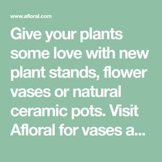 Give your plants some love with new plant stands, flower vases or natural ceramic pots. Visit Afloral for vases and planters for home or wedding centerpieces, great selection and prices. Flower Vases, Flower Pots, Wholesale Vases, Tall Floor Vases, Tall Flowers, Wood Vase, Ceramic Pots, Plant Stands, Wedding Centerpieces