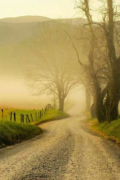 The road beckons...