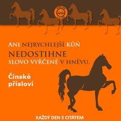 Ani nejrychlejší kůň nedostihne slovo vyřčené v hněvu. Čínské přísloví | citáty…