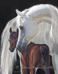 Horse Painting Horse Art Print Mother and Baby by ArtByJulene… Horse Pictures, Pictures To Paint, Beautiful Horses, Animals Beautiful, Arte Equina, Arabian Art, Arabian Horses, Horse Artwork, Horse Portrait