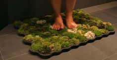 DIY How to Make Your Own Eco-Friendly Moss Bathmat