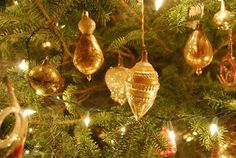 *Maynard Greenhouse: My first Vintage Christmas Monday