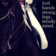 Top 100 horse quotes photos #thursdaynight #horsequotes #equestrian #softhands See more http://wumann.com/top-100-horse-quotes-photos/