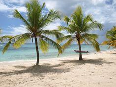 Kostenloses Bild auf Pixabay - Natur, Strand, Karibik, Sand