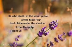 """Bible: """"He who dwells in the secret place of the Most High shall abide under the shadow of the Almighty"""" (Psalm 91:1). scripture, scripture graphic, image"""