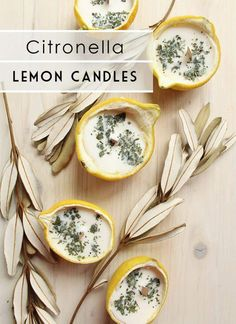 DIY Citronella Lemon Bowl Insect Repellent Candles - - Is there anything more satisfying than an end of summer get-together under the stars? Make DIY Citronella Lemon Bowl Candles recipe to repel insects outdoors! Velas Diy, Lemon Bowl, Candle Making Business, Citronella Candles, Beeswax Candles, Homemade Candles, Diy Vegan Candles, Diy Candles At Home, Diy Candle Ideas