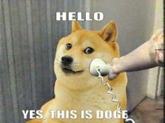 much answer very telefone, wow