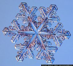 Snow Facts: Interesting Trivia About Winter Weather