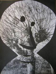 Pablo Picasso, André Villers, Le corrigan effeuillé, 1962