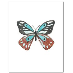 Hey, I found this really awesome Etsy listing at http://www.etsy.com/listing/100046612/butterfly-in-cyan-and-terracotta-8x10