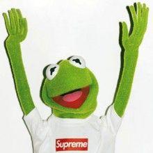 Supreme kermit-