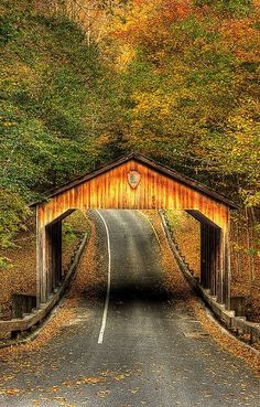 Old and beautiful I would like to drive through that bridge