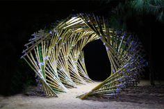 the tunnel: a barreling bamboo wave by vinay pateel