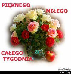 Image Weekend Humor, Floral Wreath, Motto, Image, Fotografia, Pisces, Floral Crown, Mottos, Flower Crowns