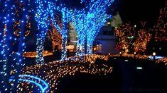 We Wish You A Merry Christmas - Japanese Christmas Song (HD)