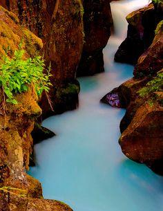 Fine Art PhotographyAvalanche Gorge at Glacier by PhotoCatcher, $45.00