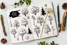 Sketch Set of Trees and Bushes. by Epine on @creativemarket
