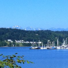Liberty Bay with Olympic Mountains, in the background, Poulsbo Washington