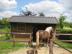 5. Robuuste houten ponystal of minipaardenstal met een kleine paardenbox en een schuilstal ook geschikt voor ander kleinvee 15m2