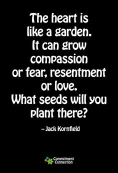 The is like a garden. It can grow compassion or fear, resentment or love. What seeds will you plant there? - Jack Kornfield
