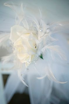 I'm thinkin this in my hair and these same feathers in my broach bouquet too!!