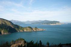 The Marlborough Sound is a popular cruise destination on New Zealand's South Island