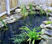 Any Garden Ponds and Water Features Make your landscape interesting with the use of a water feature