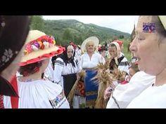 SECERISUL LA SALVA NASAUDULUI, BISTRITA NASAUD. Emisiune de Emilia Bubulac (HD) - YouTube Salvia, Try Again, Youtube, Sage, Youtubers, Youtube Movies