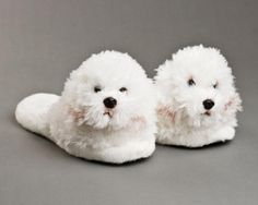 For Rick: Bichon Frise Dog Slippers