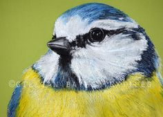 'Blue Tit' Hand & Machine Embroidered Art Canvas ©gillianbates 2016