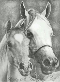 Equine Fine Art: Pencil, Charcoal & Pastel Horse Drawings (Dunway Enterprises) I love pencil art (Horses) Horse Drawings, Animal Drawings, Pencil Drawings, Horse Sketch, Graphite Art, Horse Artwork, Charcoal Art, Equine Art, Western Art